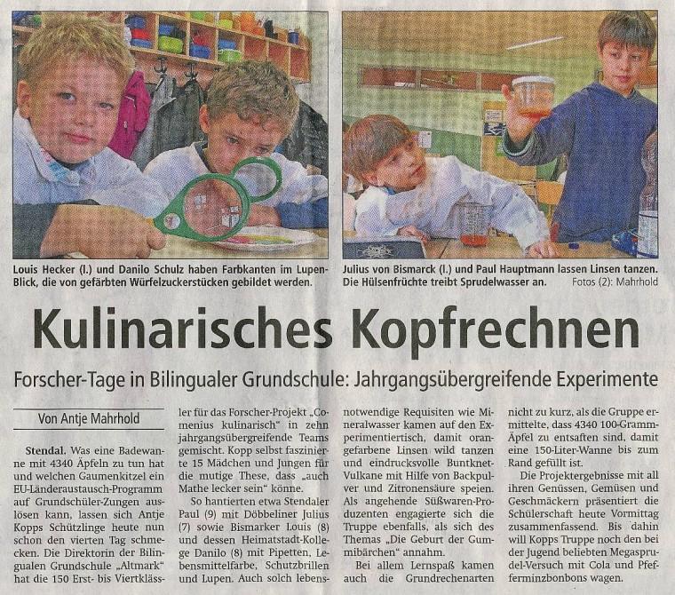Pressebericht29